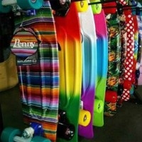 Penny Board Nickel 27""